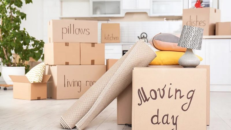 These tips will help you navigate your move with the entire family