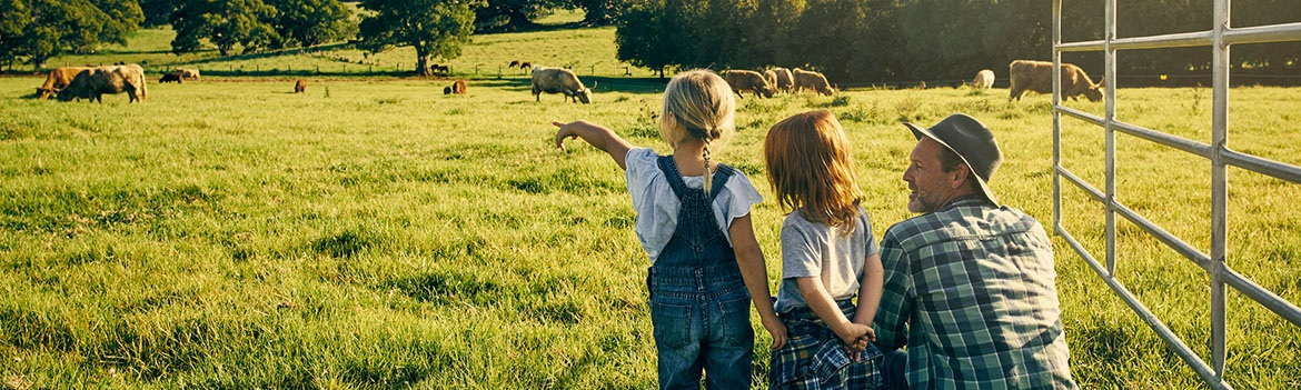 Important Requirements for Farm and Ranch Loan Application
