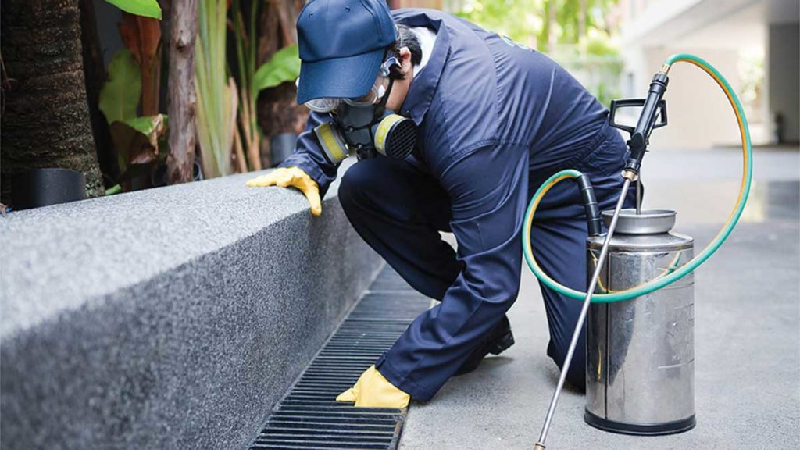 Top Tips to Hire the Best Pest Control company is Werribee