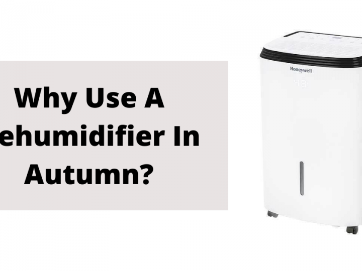 Why use a dehumidifier in autumn?