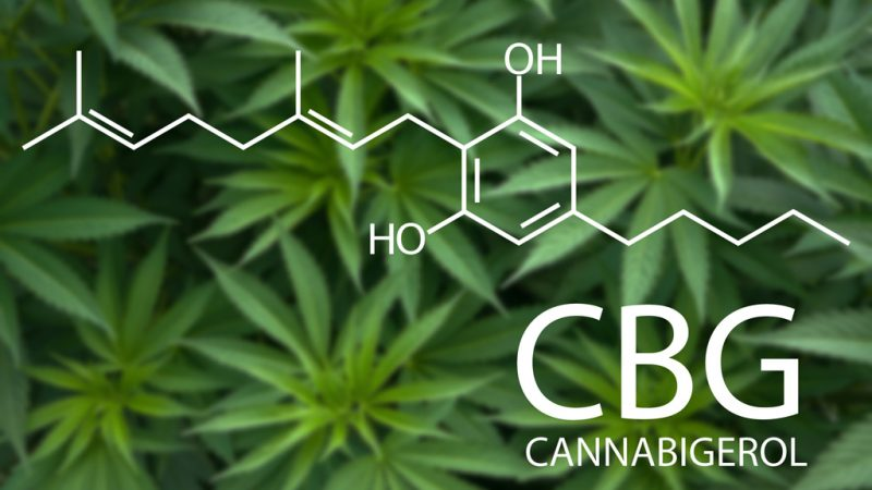 What are the Benefits of CBG?