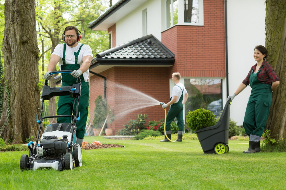 Mistakes to Avoid When Hiring Landscaping Companies