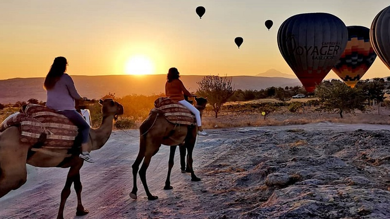 All That You Need to Know About Cappadocia Camel Safari