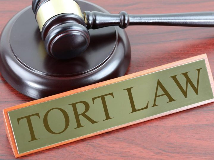 Information You Need to Know About Tort Laws and Claims