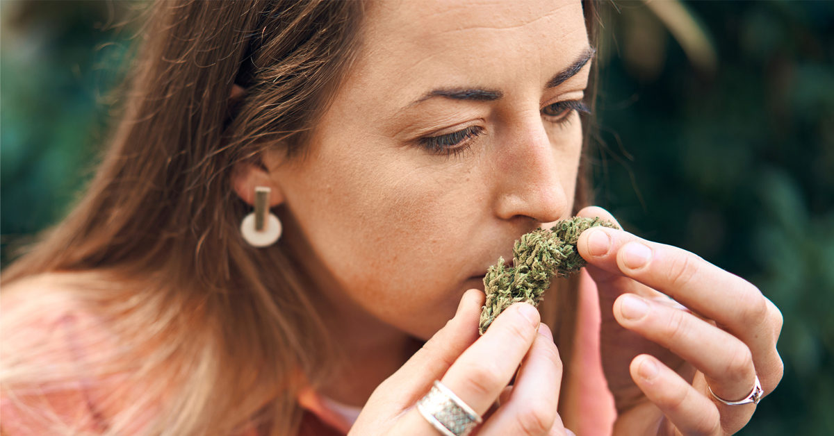 Good & Bad Weed – Read What You Need To Know To Avoid Health Crises