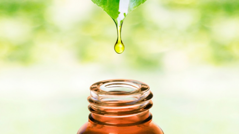 Importance of Gathering Information of Natural Skincare Products before Buying