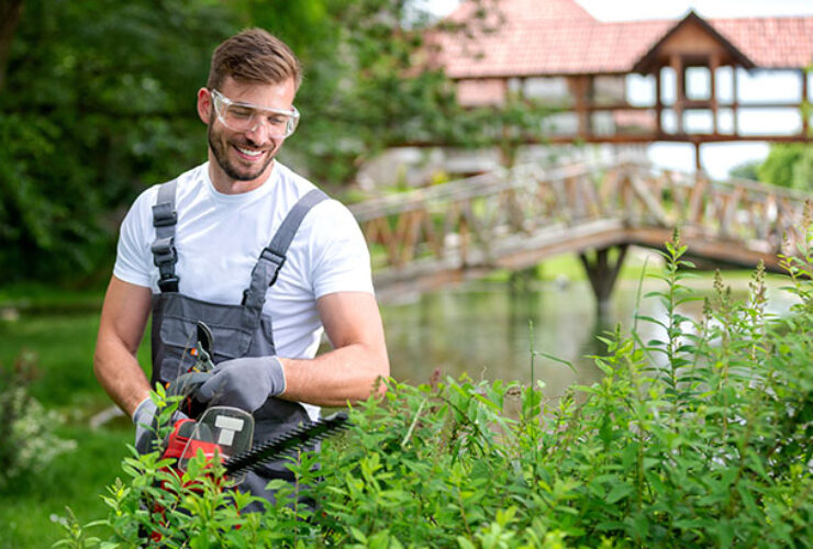 Why Get Professional Landscaping Help in Salt Lake City?