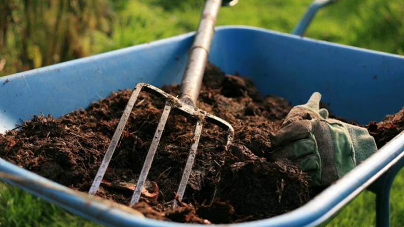 Is Compost the Same as Living Soil?