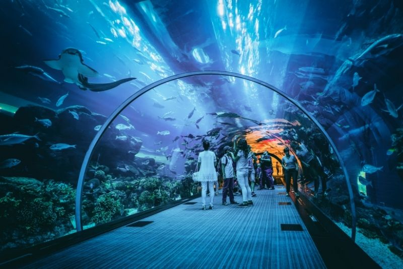 Guide to Adventure and Fun Things to Do in Dubai